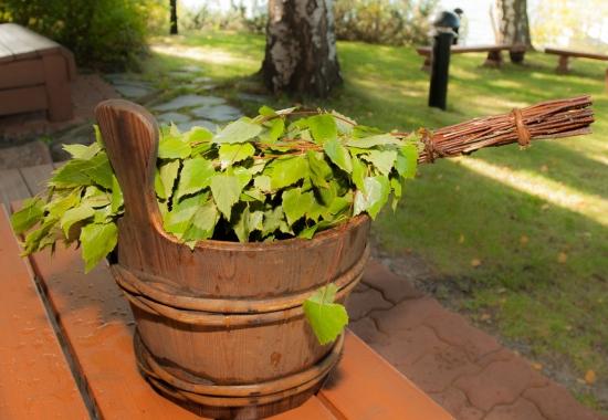 Березовый, дубовый, липовый банные веники: какой выбрать, каковы их полезные свойства